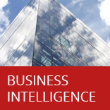 M-Brain Business Intelligence
