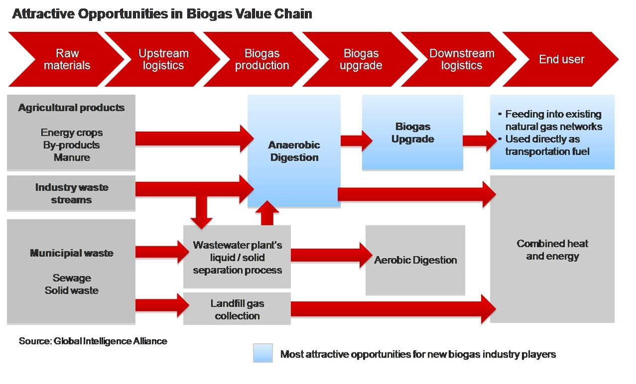 opportunities_biogas_value_chain
