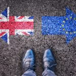 Brexit will affect the forest industry